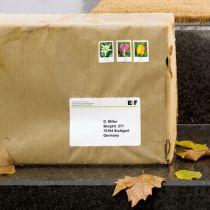 Revenda Papel - Herma Weatherproof Labels   8331 25 Sheets  200 pcs.    99,1x67,7