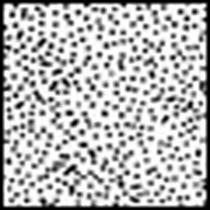 Revenda Filtros Cokin - Filtro Cokin Filtro A850 Diffusor 3