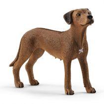 Revenda Figuras Animais - Schleich Farm World        13895 Rhodesian Ridgeback