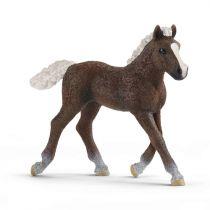 Figurini Animali - Schleich Farm World        13899 Black Forest Foal