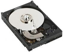 Comprar Discos Duros Internos  - DELL HDD 3.5´´ 1TB 7200RPM SATA CABLED CUSKIT